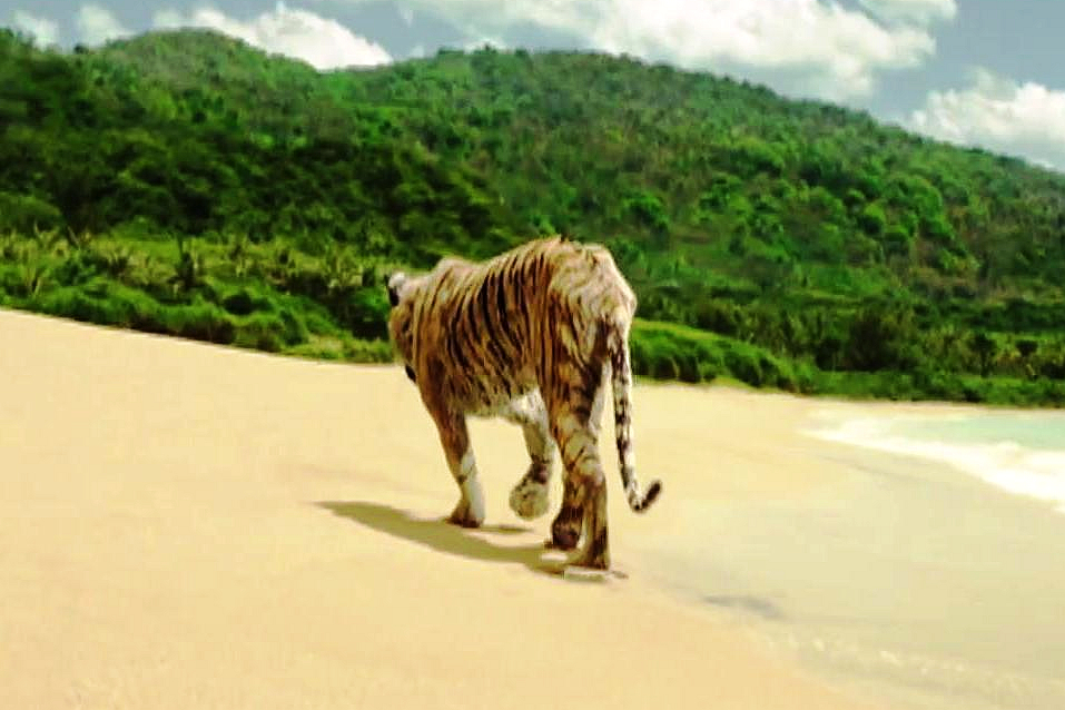 richard parker life of pi essay 2012-11-21 life of pi is a cinematic  come to understand pi's views on god and life  magee shifts the story to a relationship drama between pi and richard parker,.